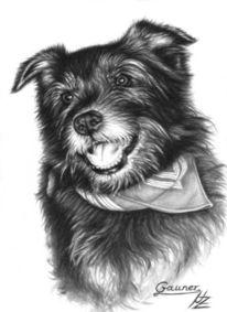 Portrait, Hund, Chien, Malerei
