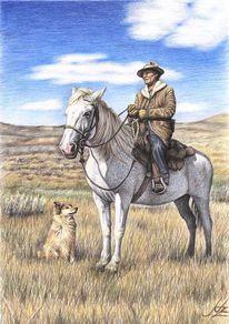 Pferde, Realismus, Schimmel, Pferdezeichnung