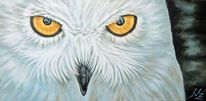 Tiere, Tiermalerei, Portrait, Schnee