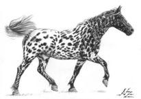 Pferdezeichnung, Kohlezeichnung, Knabstrupper, Pippi langstrumpf
