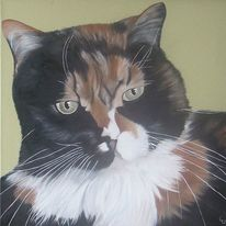 Katze, Ölmalerei, Tierportrait, Tiere