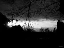 Dunkel, Kälte, Dezember, Sonnenuntergang