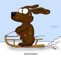 Hund, Schlitten, Schnee, Schlittenhund