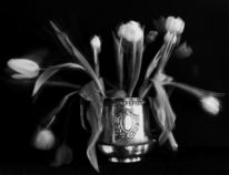 Konzeptuelle fotografie, Tulpen, Vase, Dauerbelichtung