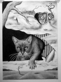 Katze, Trockner, Surreal, Fön