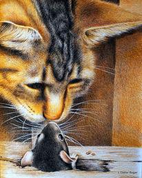 Freundschaft, Katze, Maus, Illustrationen