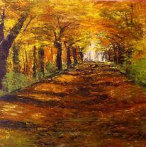 Herbst, Sommer, Wald, Waldweg