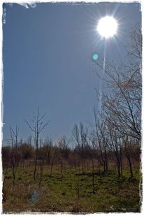 Freiheit, Frühling, Stille, Natur