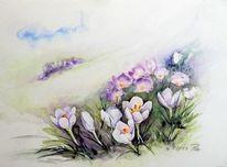 Krokus, Blumen, Frühling, Aquarell