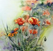 Aquarellmalerei, Blumen, Mohnblumen, Mohn
