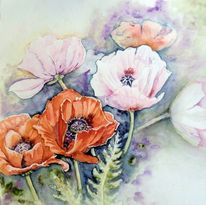 Mohn, Mohnblumen, Blumen, Aquarellmalerei