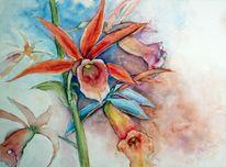 Blumen, Aquarellmalerei, Orchidee, Aquarell