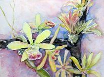 Bromelien, Blumen, Orchidee, Aquarellmalerei