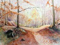 Sächsische schweiz, Landschaft, Herbst, Wanderweg