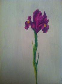 Blumen, Lila, Malerei, Pflanzen