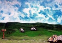 Tiere, Himmel, Wiese, Schaf