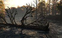 Seele, November, Landschaft, Baum