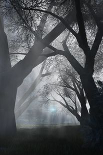 Baum, Licht, Weg, Digitale kunst