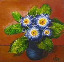 Blau primel, Pflanzen, Frühling, Grüm