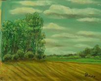 Himmel, Wolken, Landschaft, Baum