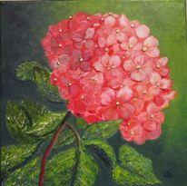 Hortensien, Blumen, Rot, Gelb