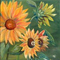 Pflanzen, Blüte, Blau, Sonnenblumen