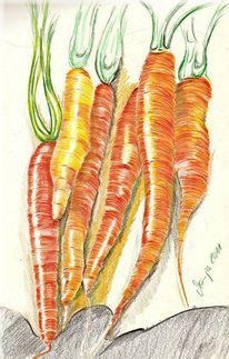Buntstiftzeichnung, Zeichnung, Gemüse, Zeichnungen