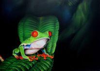 Frosch, Rotaugenfrosch, Malerei, Tiere