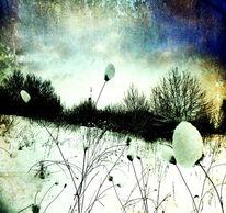 Burdock, Stimmung, Winter, Textur