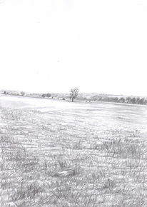 Bleistiftzeichnung, Grau, Baum, Schwarz