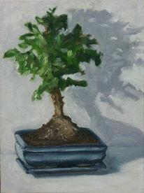 Blau, Ölmalerei, Bonsai, Baum