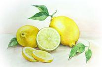 Früchte, Zitrusfrüchte, Landhaus, Limonade