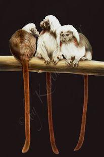 Gruppe, Affe, Tiere, Horde