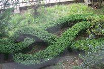 Verschlingung, Gartenkunst, Buchsbaum, Grünanlage