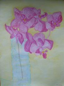 Orchidee, Zeichnung, Aquarell, Übungen