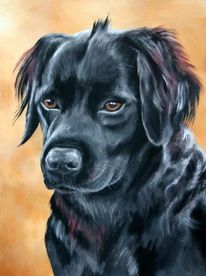 Hundeportrait, Malerei, Tiere