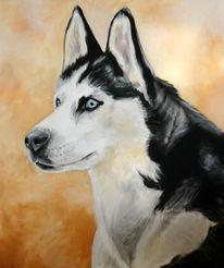 Hundeportrait, Husky, Malerei, Tiere