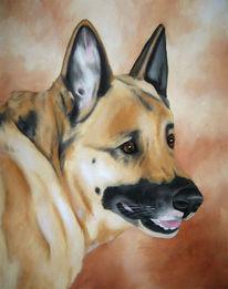 Hundeportrait, Schäferhund, Malerei, Tiere