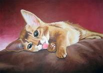 Katze, Welpe, Liegend, Malerei
