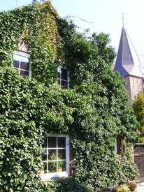 Wangerland, Haus, Tettens, Glockengasse 2