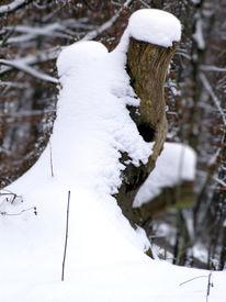 Brautpaar, Schnee, Winter, Fotografie
