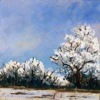 Winter, Himmel, Weiß, Baum