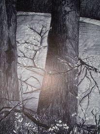 Zeichnung, Filsstift, Naturstudie, Wild