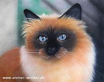 Tiere, Katze, Acrylmalerei, Malerei