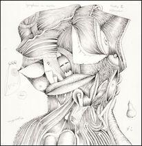 Zeichnungen, Malerei und grafik, Haut