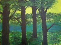 Fluss, Sonne, Baum, Wald