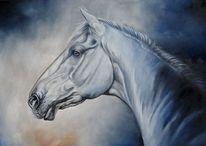 Weiß, Pferde, Warmblutpferd, Porzellan