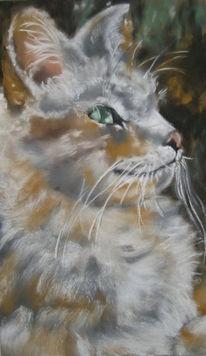 Katze, Fell, Katzenaugen, Malerei