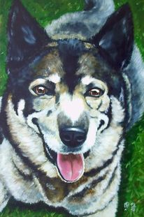 Hund, Schäferhund, Tiere, Malerei