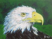 Vogel, Natur, Adler, Malerei